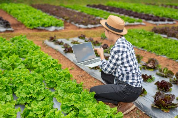 Smart Farmers เกษตรอัจฉริยะยุคใหม่ ทางเลือกเกษตรกรยุคไอที